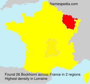 Familiennamen Bockhorni - France
