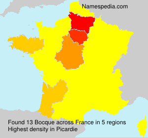 Surname Bocque in France