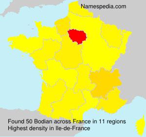 Surname Bodian in France
