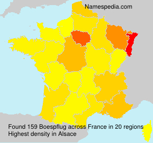 Surname Boespflug in France