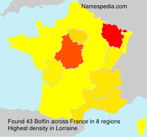 Surname Boffin in France
