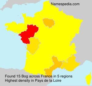 Surname Bog in France