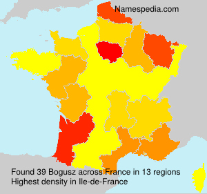 Surname Bogusz in France
