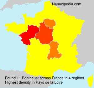 Familiennamen Bohineust - France