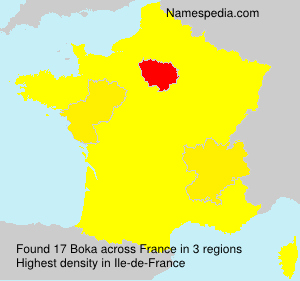 Surname Boka in France