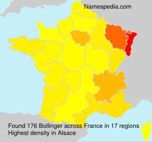 Familiennamen Bollinger - France