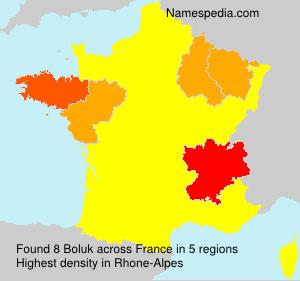 Surname Boluk in France