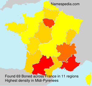 Familiennamen Boned - France