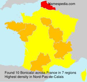Familiennamen Bonicalzi - France