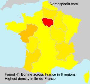 Surname Bonine in France
