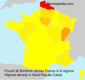Surname Bontinck in France