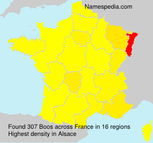 Surname Boos in France