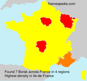 Familiennamen Borak - France