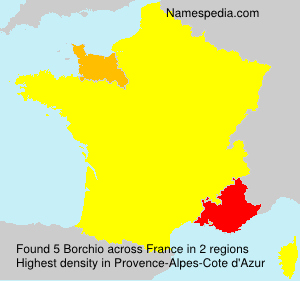 Surname Borchio in France