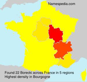 Surname Borecki in France