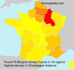 Surname Borgnet in France