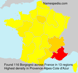 Surname Borgogno in France