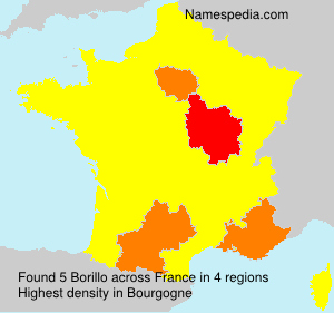 Surname Borillo in France