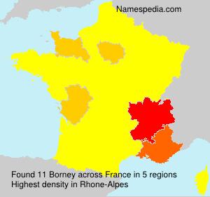 Surname Borney in France