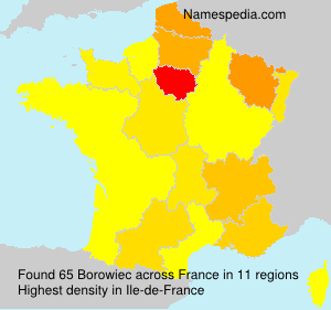 Surname Borowiec in France
