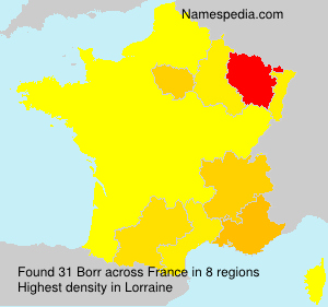 Surname Borr in France