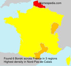 Familiennamen Borski - France