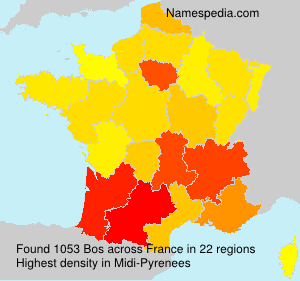 Surname Bos in France