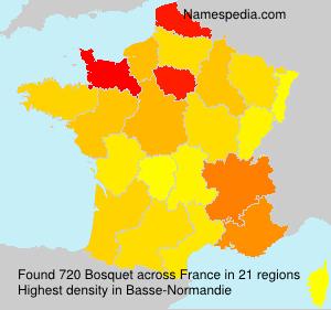 Familiennamen Bosquet - France