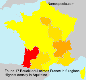 Surname Bouakkaoui in France
