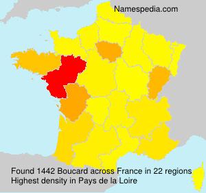 Surname Boucard in France