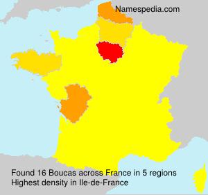 Familiennamen Boucas - France