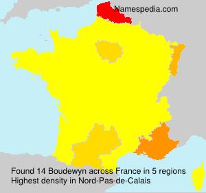Surname Boudewyn in France