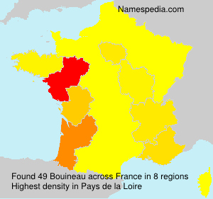 Surname Bouineau in France