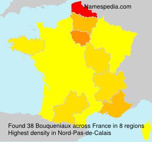 Familiennamen Bouqueniaux - France