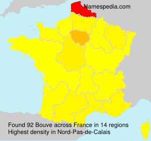 Surname Bouve in France