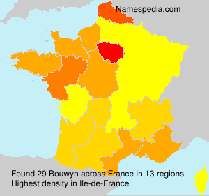 Surname Bouwyn in France