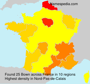 Surname Bown in France