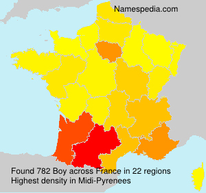 Surname Boy in France