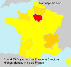 Surname Boyaci in France