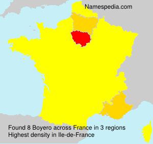 Surname Boyero in France