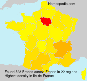 Surname Branco in France