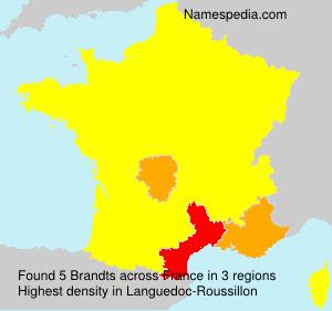 Surname Brandts in France