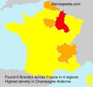 Familiennamen Brandys - France