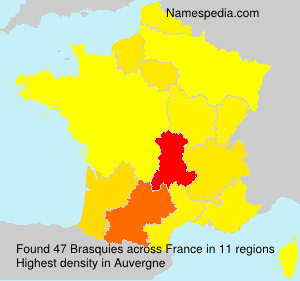 Familiennamen Brasquies - France