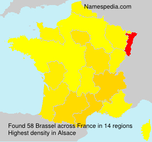 Surname Brassel in France