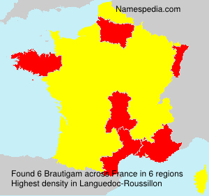 Surname Brautigam in France