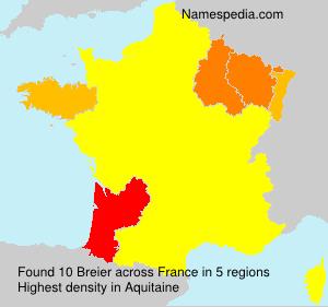 Familiennamen Breier - France
