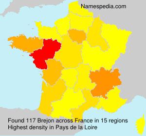 Familiennamen Brejon - France
