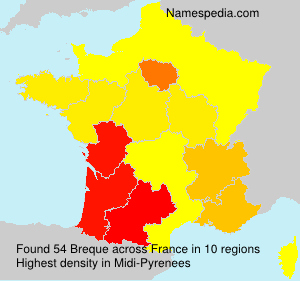 Surname Breque in France