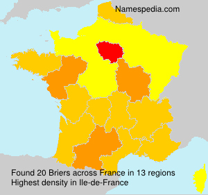 Surname Briers in France